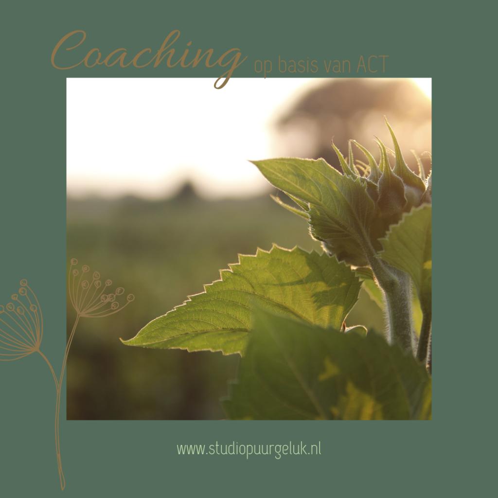 ACT: door middel van Acceptatie, defusie en mindfulness leer je afstand te nemen van negatieve gedachten en overtuigingen.